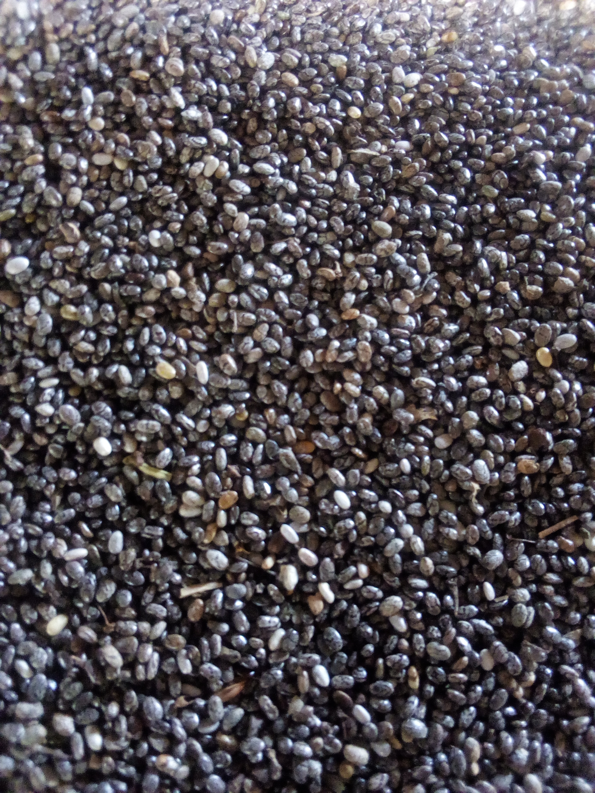 Chia seeds produce (1 metric tonne)