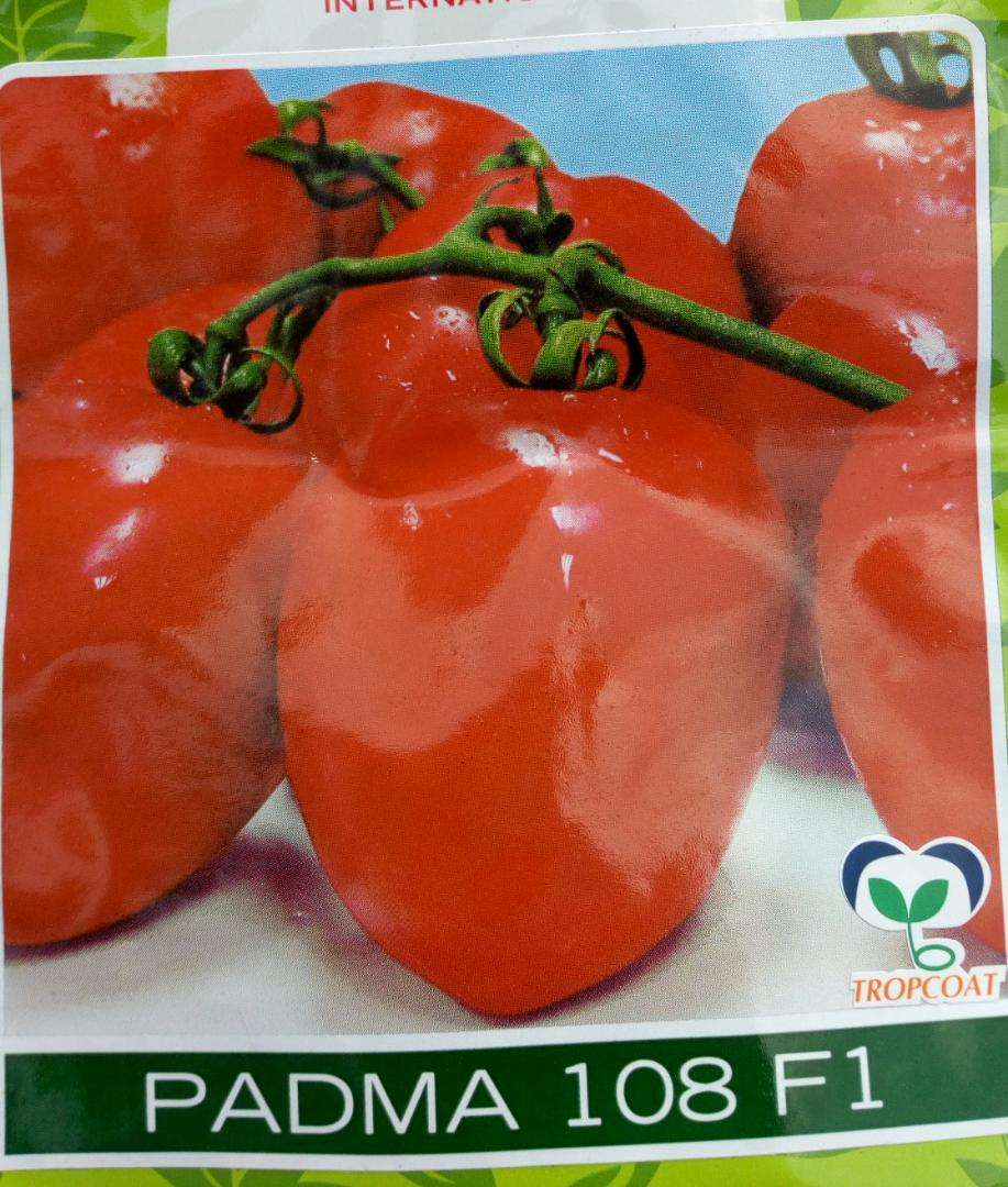 Padma 108 F1 tomato seeds (5gm)