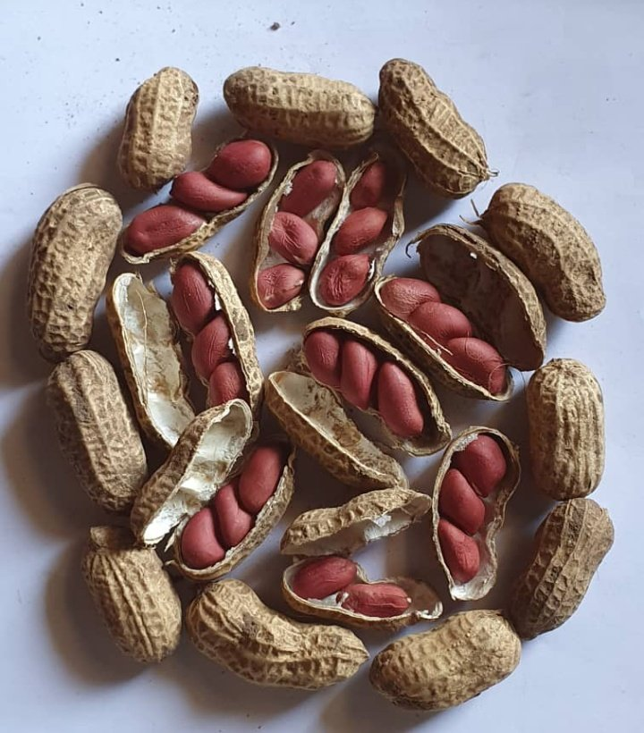 Unshelled Red beauty groundnuts (1Kg)