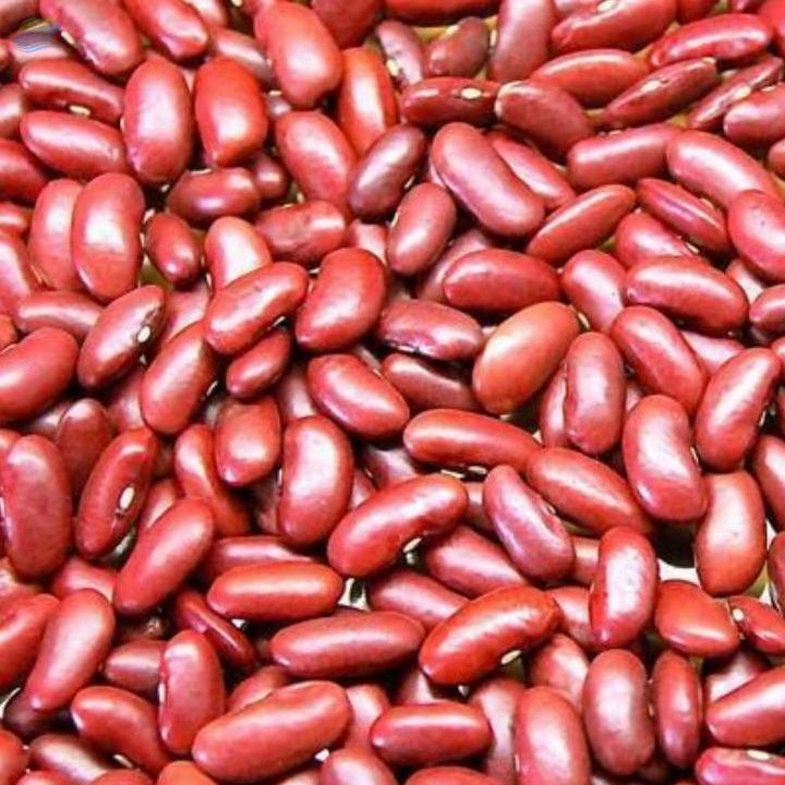 Red Kidney beans farming package (1 acre)