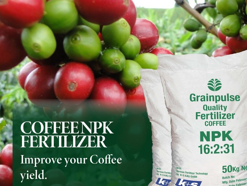 Coffee NPK Fertilizer (50Kg)