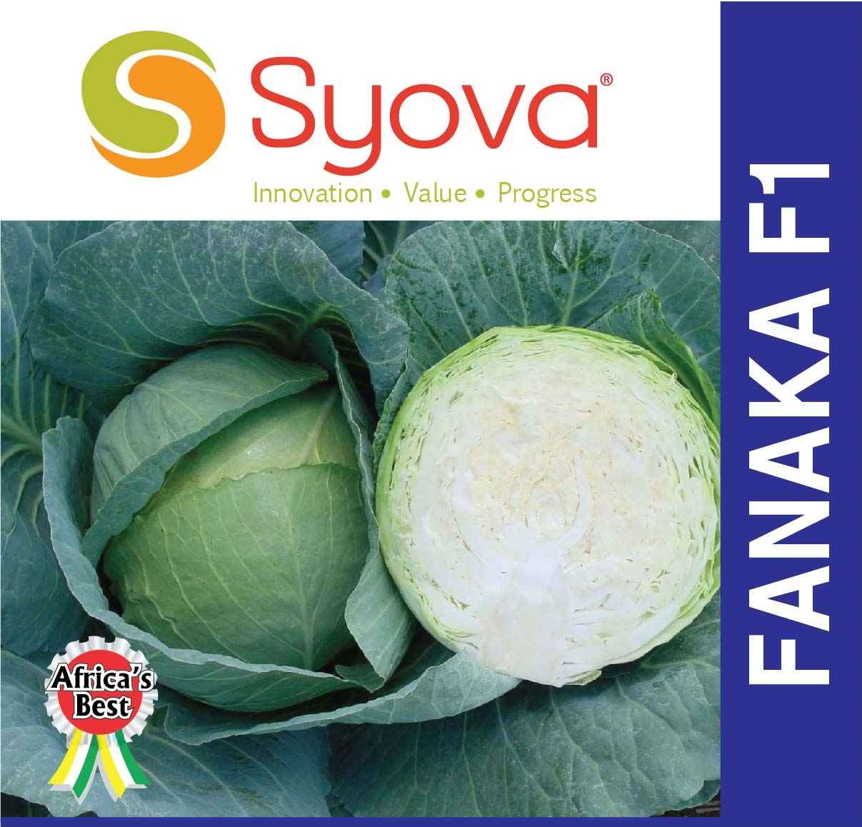 FANAKA F1 Cabbage Seeds (10gm)