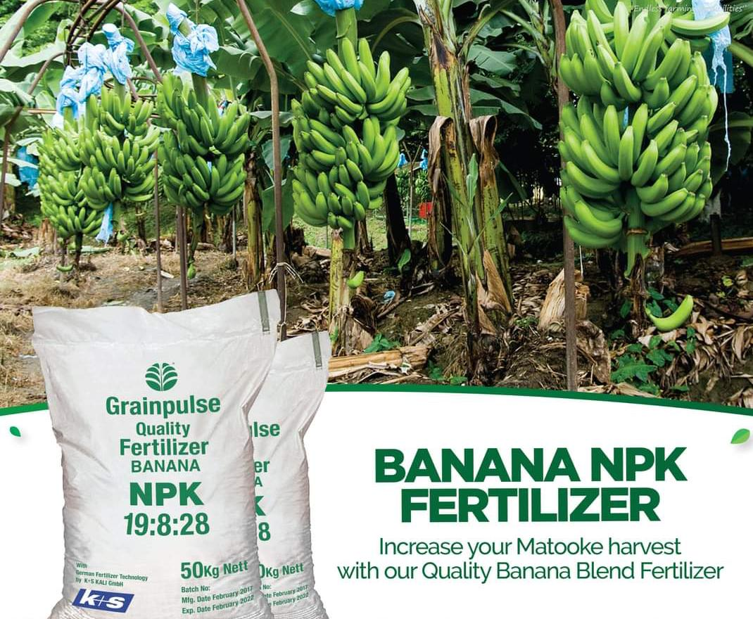 Banana NPK Fertilizer (50Kg)