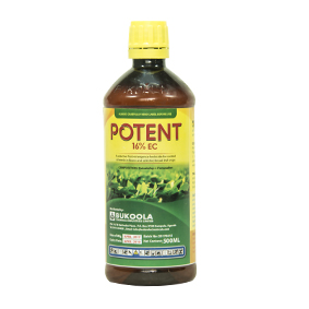 Potent beans selective herbicide (500ml)