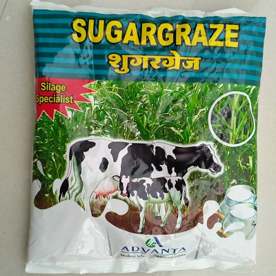 Sugargraze sweet sorghum pasture seeds (1Kg)